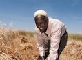 Jak se žije na etiopském venkově
